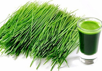 Green Super foods to boost immunity in the winter
